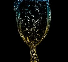 Water Glass by Glen  Robinson