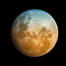 The Moon by Glen  Robinson