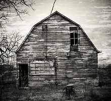 Canadian Barn by Dave Hare