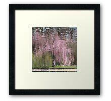 Pink Breeze Framed Print
