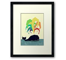 Rainbow Warrior Framed Print
