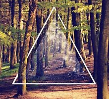 PITCH A PRISM TRIANGLE WOODS FOREST GALAXY by SourKid