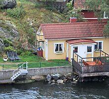 little house on the shore by mrivserg