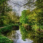 Canal towpath walk by Martina Fagan