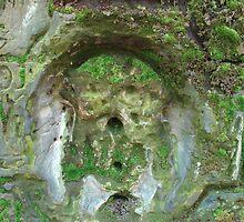 Limestone rock XV. - Secret symbol by Natas