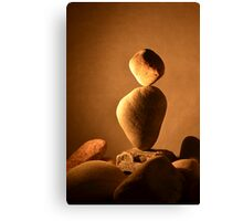 Double Balance, Light and Shadow #1 Canvas Print