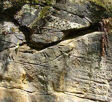 Limestone rock XVIII. - Search Wolf by Natas