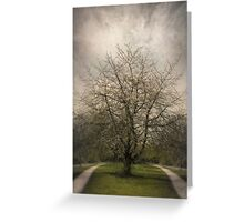 Parallel Paths Greeting Card
