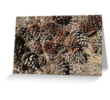 Sierra Pine Cones Greeting Card