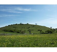 St Catherine's Hill Photographic Print