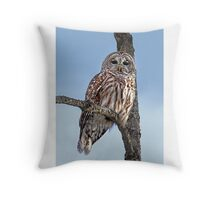 Barred Owl - Low, Quebec Throw Pillow