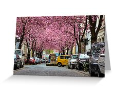 Rows of cherry blossom trees in full bloom on Heerstrasse (cherry blossom avenue) in Bonn in Germany Greeting Card