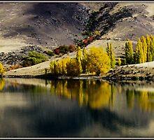 Clyde River NZ  in the Autumn by bekyimage