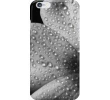 Phlox 1 B&W iPhone Case/Skin