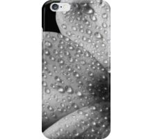 Phlox 1 B&W iPhone Case/Skin
