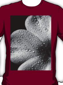 Phlox 1 B&W T-Shirt