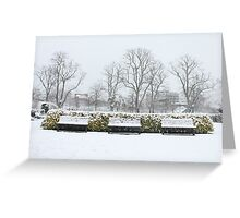 Snowy benches Greeting Card
