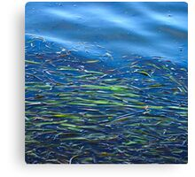 Blues and Greens Canvas Print