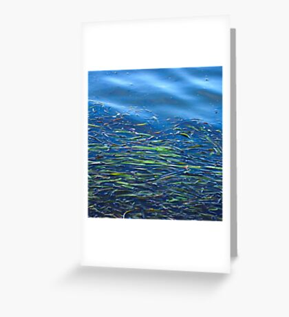 Blues and Greens Greeting Card