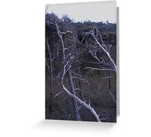 Skeleton Trees Greeting Card