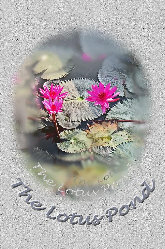 The Lotus Pond by DAdeSimone
