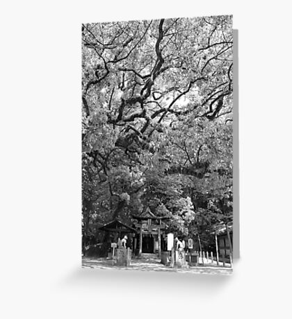 Sumiyoshi Shrine Greeting Card