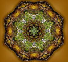 Riverside Mandala 1 by haymelter