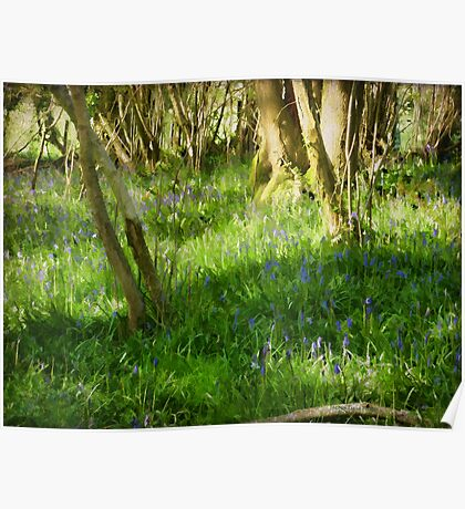 A Spring Day in Purbeck Poster