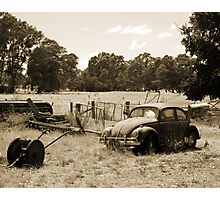 Farming Beetle Photographic Print
