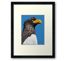 Does my Beak Look Big in Yellow? Framed Print