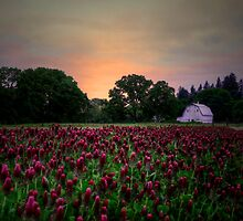Love All Around by Charles & Patricia   Harkins ~ Picture Oregon