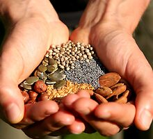 Organic Nuts and Seeds by Lewis Packman