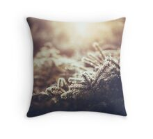 Hint of winter Throw Pillow