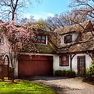 House - Westfield NJ - Who doesn&#x27;t love spring  by Mike  Savad