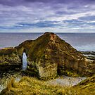 Flamborough Head by Angie Morton