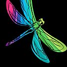 Rainbow Dragonfly on Black by pjwuebker