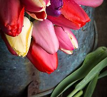 Spring Tulip Flowers by Edward Fielding