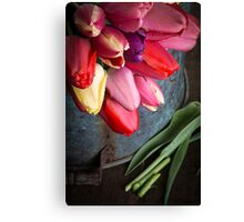 Spring Tulip Flowers Canvas Print