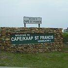 Cape St Francis Welcome by Eldon Mason