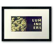 The Lumineers Framed Print