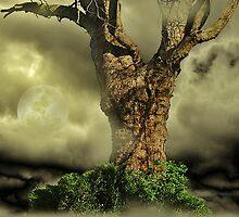 Tree Dreams by Christine Lake