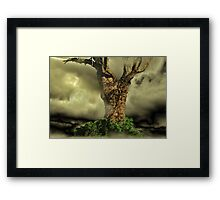 Tree Dreams Framed Print