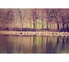 Spring Reflected Photographic Print