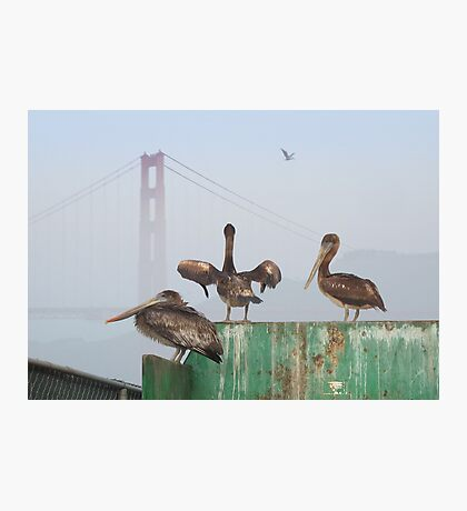 Three Amigos Photographic Print