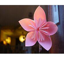 paper star flower Photographic Print