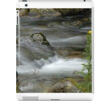 Flowing stream iPad Case/Skin
