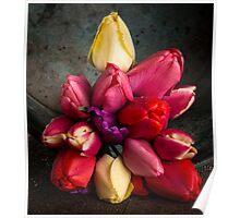 Fresh Spring Tulips Still Life Poster