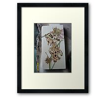 Old Leaf Framed Print