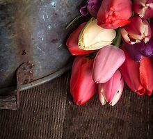 Fresh Cut Spring Tulips by Edward Fielding