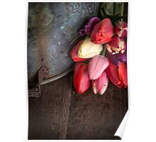 Fresh Cut Spring Tulips Poster